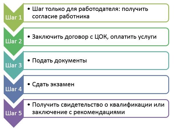 Этапы независимой оценки квалификации