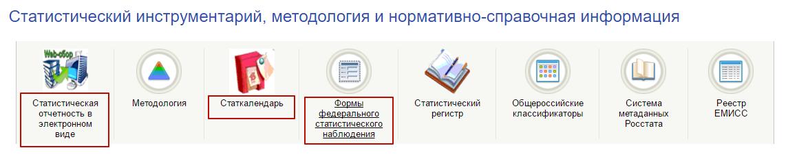 hlektronnye_servisy_rosstata